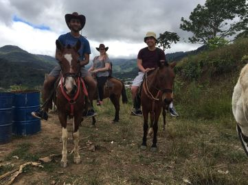 Horse backing in the mountians